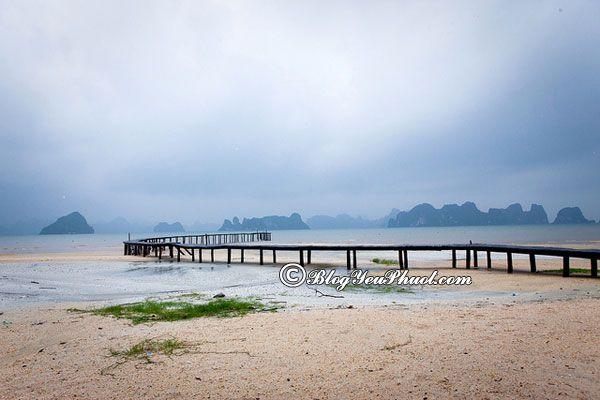 Quãng đường từ thủ đô Hà Nội đi Vân Đồn bao nhiêu km? Hướng dẫn đường đi phượt Vân Đồn từ Hà Nội
