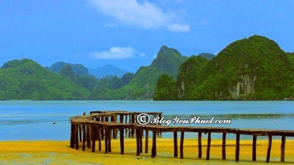 Du lịch Vân Đồn từ Hà Nội đi đường nào? Cách di chuyển từ Hà Nội đi Vân Đồn du lịch