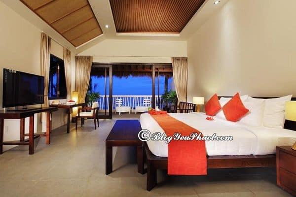Nên đặt phòng ở resort nào Mũi Né giá rẻ, nổi tiếng? Địa chỉ những resort ven biển Mũi Né đẹp, tiện nghi đầy đủ