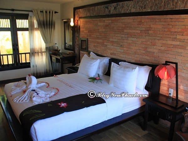 Nên ở resort nào khi đi du lịch Mũi Né? Địa chỉ những resort ven biển Mũi Né đẹp, tiện nghi, giá rẻ