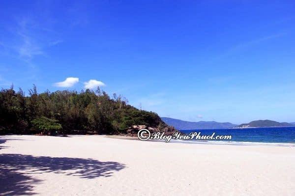 Có nên chọnDiamond Bay Nha Trang Resort & Spa khi du lịch Nha Trang?