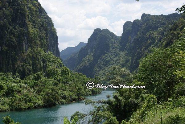 Kinh nghiệm du lịch vườn Quốc gia Phong Nha – Kẻ Bàng: Hướng dẫn đường đi từ Đà Nẵng tới Phong Nha Kẻ Bàng