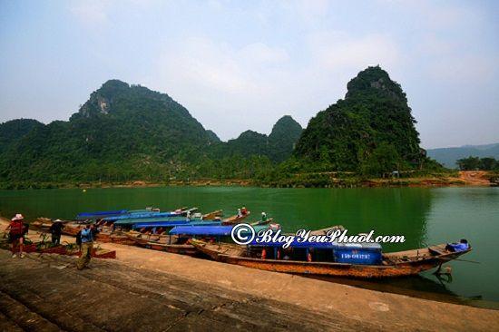 Đường đi từ Đà Nẵng đến Phong Nha – Kẻ Bàng: Kinh nghiệm di chuyển từ Đà Nẵng tới Phong Nha Kẻ Bàng