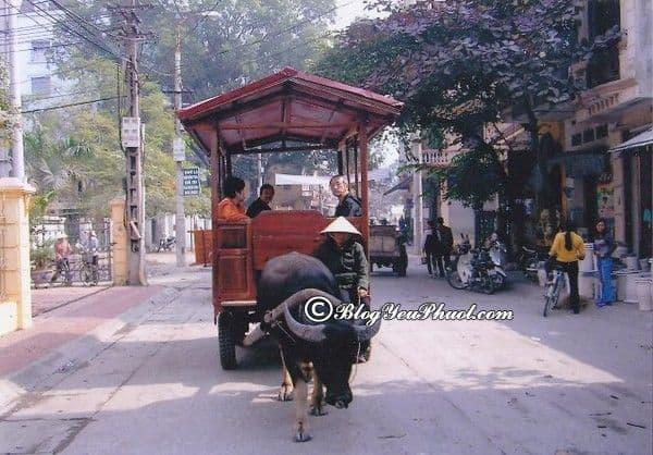 Từ Hà Nội đến Bát Tràng bao nhiêu km?