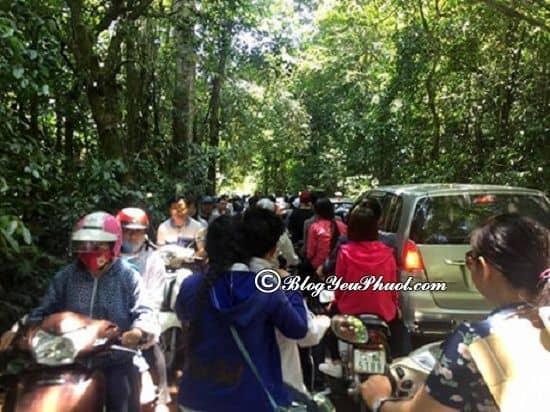 Đường đi từ Hà Nội đến vườn quốc gia Cúc Phương bằng xe máy: Hướng dẫn cách di chuyển từ vườn quốc gia Cúc Phương từ Đà Nẵng