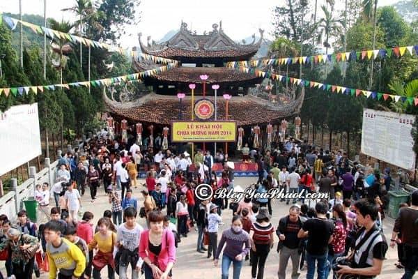 Thời điểm thích hợp đi du lịch Tuyên Quang? Hướng dẫn đường đi du lịch Tuyên Quang từ Hà Nội