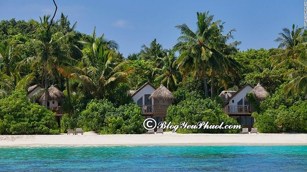 Khu nghỉ dưỡng hàng đầu tại Meldives: Địa chỉ những khu nghỉ dưỡng ven biển Maldives đẹp, nổi tiếng, chất lượng tốt