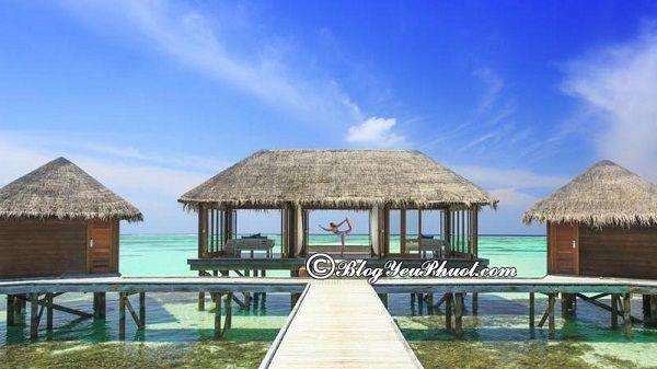 Địa chỉ những khu resort nghỉ dưỡng đẹp, nổi tiếng ở Maldives: Nên ở resort nào khi du lịch Maldives?