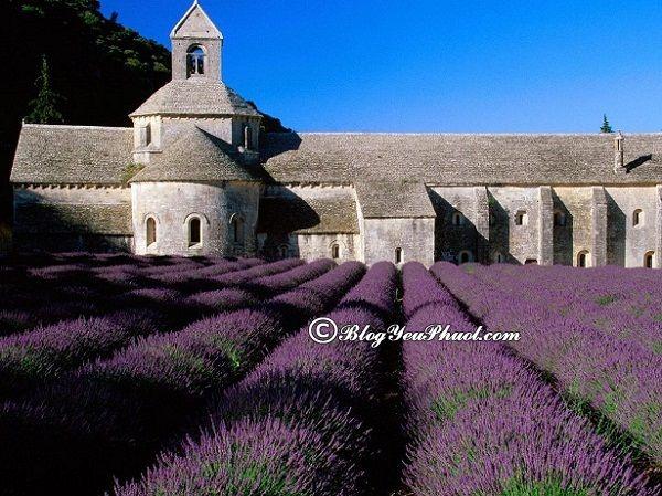 Kinh nghiệm du lịch Provence4 ngày 3 đêm