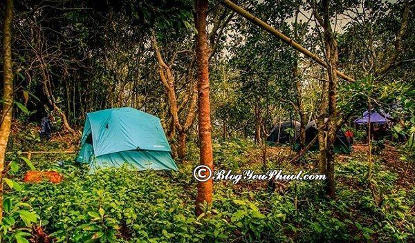 Kinh nghiệm phượt hồ Tà Đùng: Cắm trại, dã ngoại ở hồ Tà Đùng