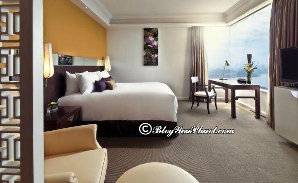 Review khách sạn 5 sao Sofitel Plaza Hà Nội: Đánh giá vị trí, tiện nghi, phòng ốc của Sofitel Plaza Hà Nội