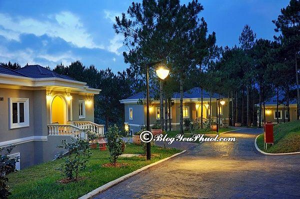 Khách sạn cao cấp ở Đà Lạt: Review chất lượng, tiện nghi, phòng ốc khách sạn Ana Mandara Villas Dalat