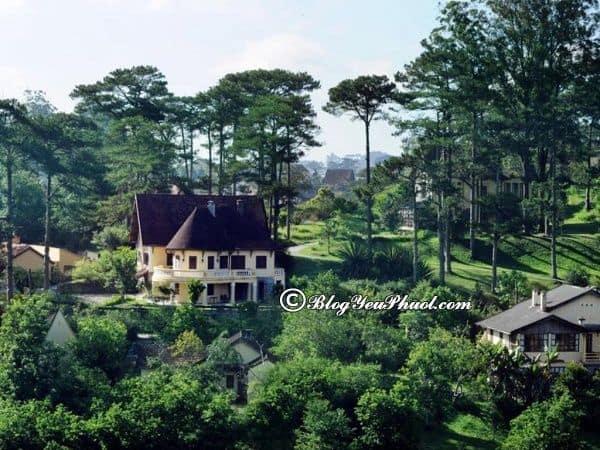 Ana Mandara Villas Dalat 5 sao review chi tiết: Có nên đặt phòng khách sạn Ana Mandara Villas Dalat hay không?