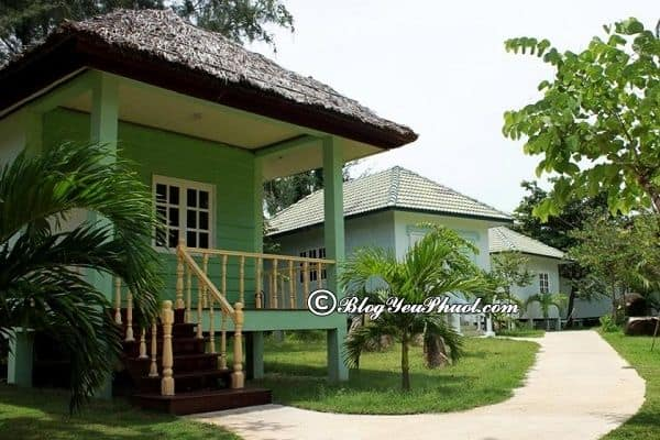 Khách sạn Paradise Beach Resort Vũng Tàu review chi tiết: Có nên đặt phòng khách sạn Paradise Beach Resort Vũng Tàu hay không?