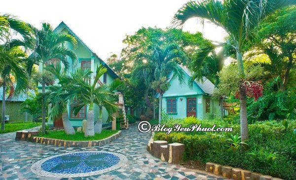Thông tin khách sạn Thùy Dương Beach Resort Vũng Tàu: Có nên đặt phòng khách sạn Thùy Dương Vũng Tàu hay không?