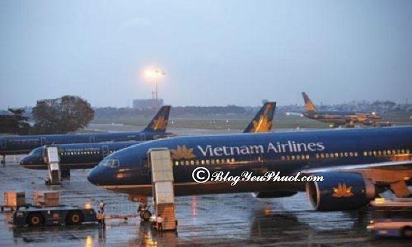Du lịch Cao Hùng, Đài Loan bằng phương tiện gì? Giá vé máy bay du lịch Cao Hùng, Đài Loan