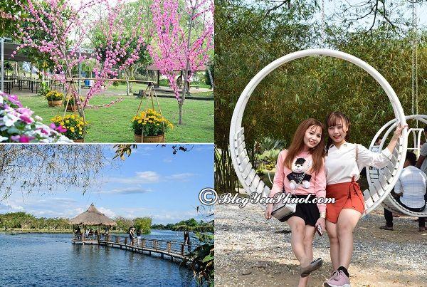Chơi gì khi đến khu du lịch Suối Mơ, Đồng Nai: Địa điểm chụp ảnh, check in cực đẹp ở khu du lịch Suối Mơ
