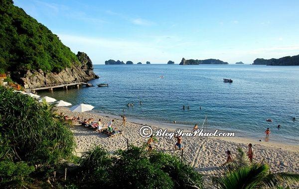 Địa điểm tham quan, du lịch nổi tiếng ở đảo Cát Bà: Nên đi đâu chơi khi du lịch Cát Bà?
