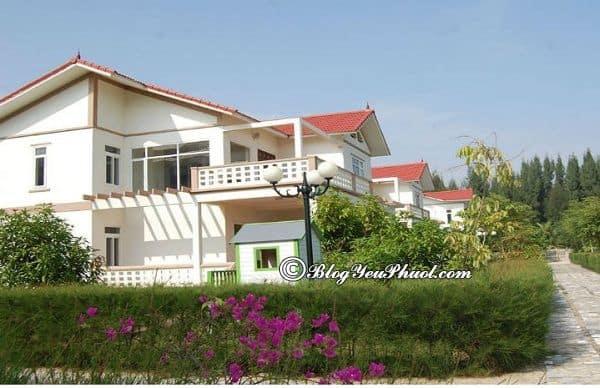 Du lịch biển Hải Tiến nên ở khách sạn nào? Khách sạn ven biển Hải Tiến tiện nghi, sạch sẽ, chất lượng tốt