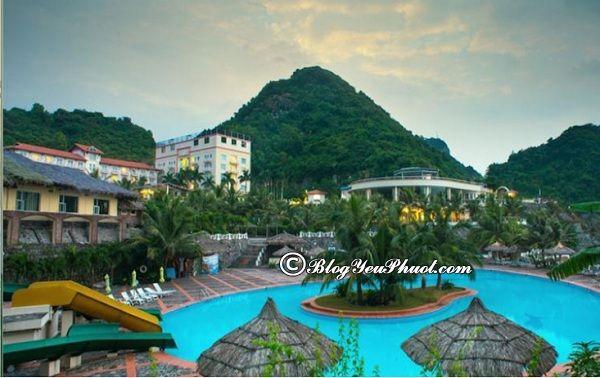 Khách sạn, resort ven biển Cát Bà tiện nghi đầy đủ: Nên ở đâu, khách sạn nào khi du lịch đảo Cát Bà?