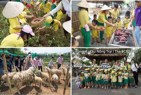 Hoạt động vui chơi, giải trí hấp dẫn ở khu du lịch BCR Sài Gòn: Nên chơi gì ở khu du lịch BCR Sài Gòn?