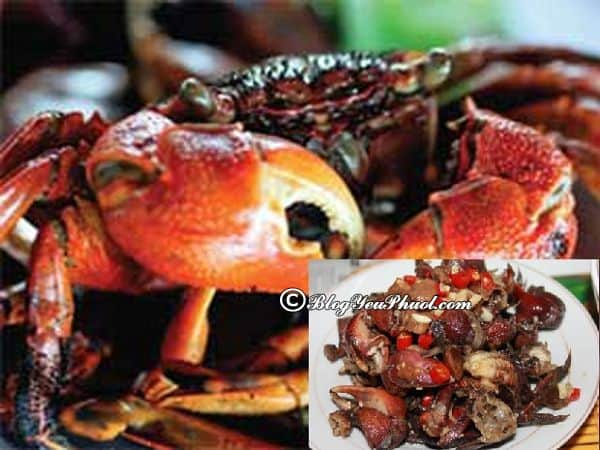 Món ăn đặc sản ngon, nổi tiếng ở Cà Mau: Du lịch Cà Mau nên ăn món gì?