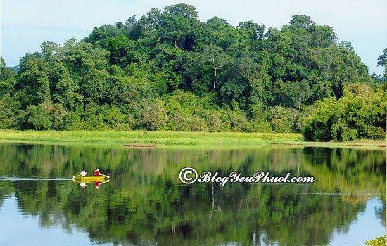 Danh lam thắng cảnh đẹp ở Đồng Nai: Vườn Quốc Gia Cát Tiên - địa điểm du lịch ở Đồng Nai