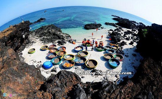 Lịch trình phượt đảo Lý Sơn 2 ngày 1 đêm: Du lịch đảo Lý Sơn 2 ngày 1 đêm có gì chơi vui, hấp dẫn?