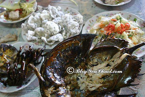 7 món ngon nổi tiếng ở đảo Cát Bà: Ăn ở đâu ngon khi du lịch Cát Bà?