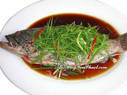 Món hải sản phải thử ở Cát Bà: Du lịch Cát Bà nên ăn gì, ăn ở đâu ngon?