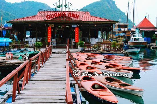 Nhà hàng hải sản ngon, rẻ ở đảo Cát Bà