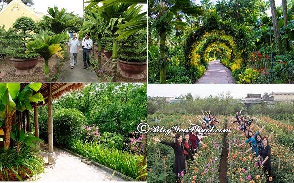 Nên đi đâu chơi, tham quan, ngắm cảnh, chụp ảnh đẹp khi đến Thái Bình? Địa điểm du lịch nổi tiếng ở Thái Bình
