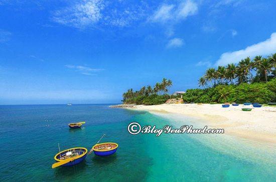 Đảo Lý Sơn - địa điểm phượt nổi tiếng Quảng Ngãi: Du lịch Quảng Ngãi nên đi đâu?