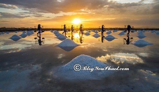 Cánh đồng muối Sa Huỳnh - điểm đến không nên bỏ qua ở Quảng Ngãi: Phượt Quảng Ngãi nên đi đâu chơi?