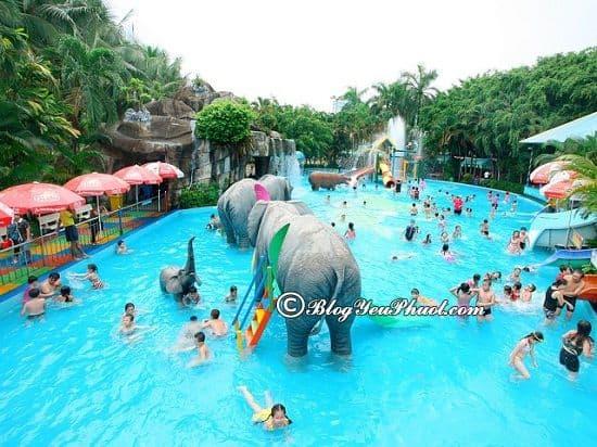 Chơi gì, trò chơi giải trí hấp dẫn tại công viên Đầm Sen: Kinh nghiệm đi tham quan, vui chơi ở công viên văn hoá Đầm Sen