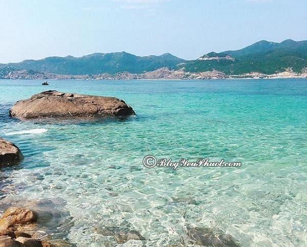 Địa điểm du lịch không thể bỏ qua ở Nha Trang: Du lịch Nha Trang nên đi đâu tham quan?