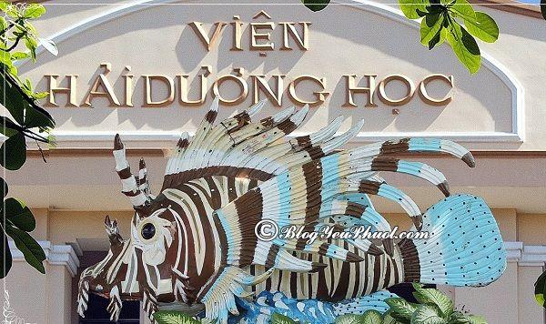 Địa điểm tham quan độc đáo, hấp dẫn ở Nha Trang: Du lịch Nha Trang nên đi đâu chơi?
