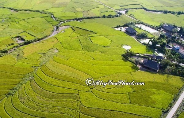 Danh lam thắng cảnh đẹp ở Lai Châu - cánh đồng Mường Than: Chơi gì khi đến Lai Châu?