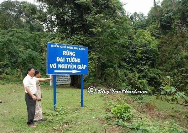Địa điểm du lịch hấp dẫn ở Sơn La: Phượt Sơn La nên đi đâu chơi?