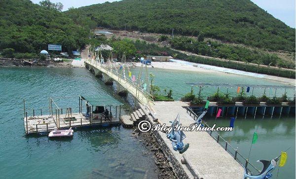 Du lịch hồ cá Trí Nguyên bằng phương tiện gì, giá vé bao nhiêu? Cách di chuyển đến thủy cung Trí Nguyên