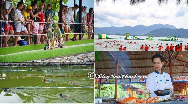 Hướng dẫn du lịch đảo khỉ Nha Trang tự túc, giá rẻ: Kinh nghiệm tham quan, vui chơi ở đảo khỉ Nha Trang