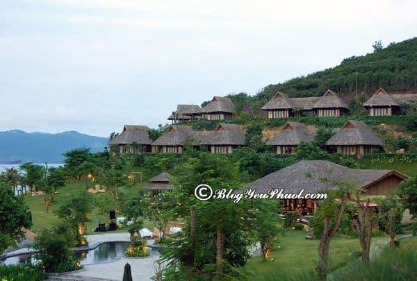 Nên ở đâu khi du lịch đảo Hòn Tằm: MerPerle Hòn Tằm Resort
