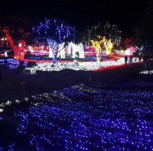 Review công viên ánh sáng Pha Luông Mộc Châu