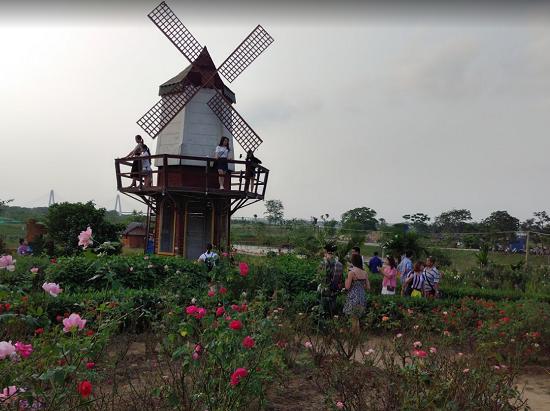 Review cảnh chụp hình, check in ở vườn hoa bãi đá Sông Hồng