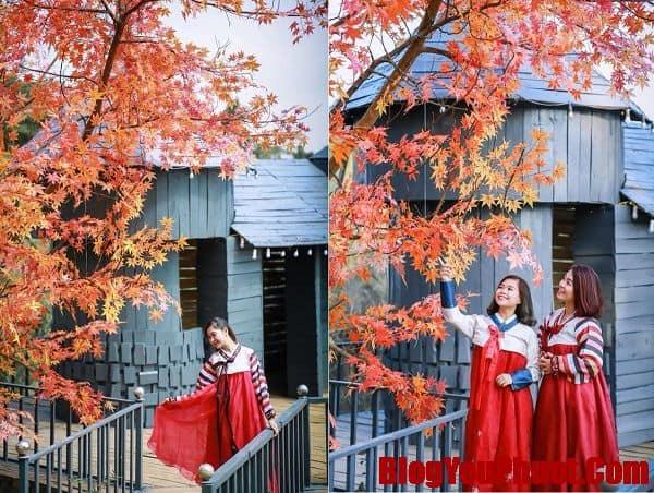 Review vườn hoa bãi đá Sông Hồng. Chụp ảnh trang phục Hàn Quốc tại vườn hoa bãi đá Sông Hồng