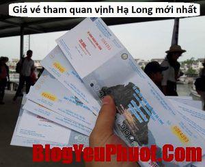 Bảng giá vé tham quan vịnh Hạ Long: vé thắng cảnh, vé thuê tàu