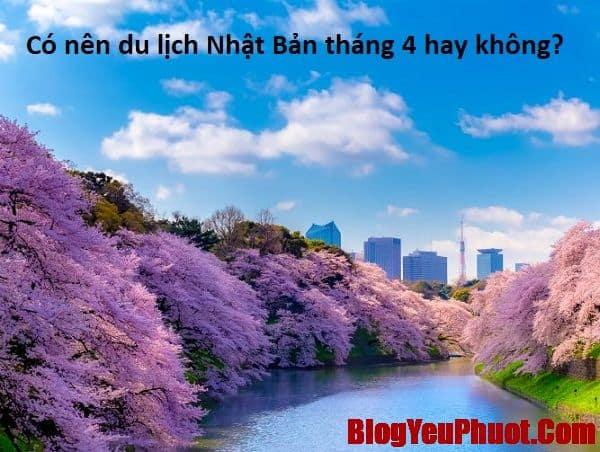 Có nên du lịch Nhật Bản tháng 4 hay không? Review, kinh nghiệm du lịch Nhật Bản tháng 4 tự túc, giá rẻ