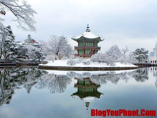 Du lịch Hàn Quốc tháng 1 có đẹp không, thời tiết thế nào? Có nên du lịch Hàn Quốc tháng 1 hay không?