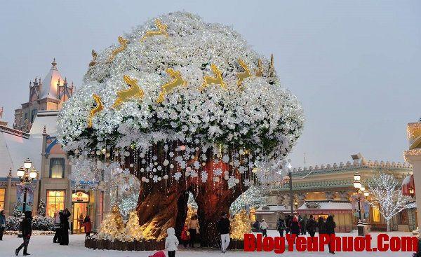 Du lịch Hàn Quốc tháng 1 nên đi đâu, chơi gì? Review du lịch Hàn Quốc tháng 1