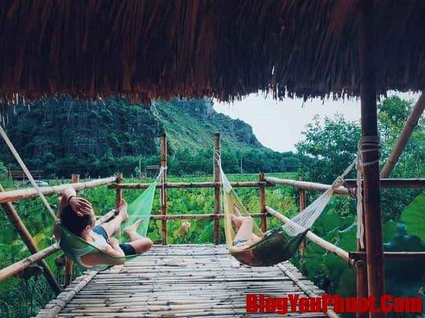Nên ở homestay nào khi du lịch Ninh Bình?
